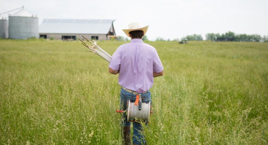 Farm Internship Kentucky