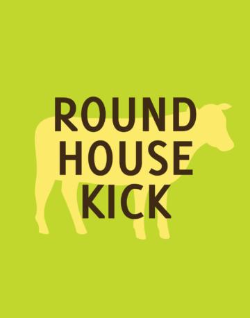 Round_House_Kick-01