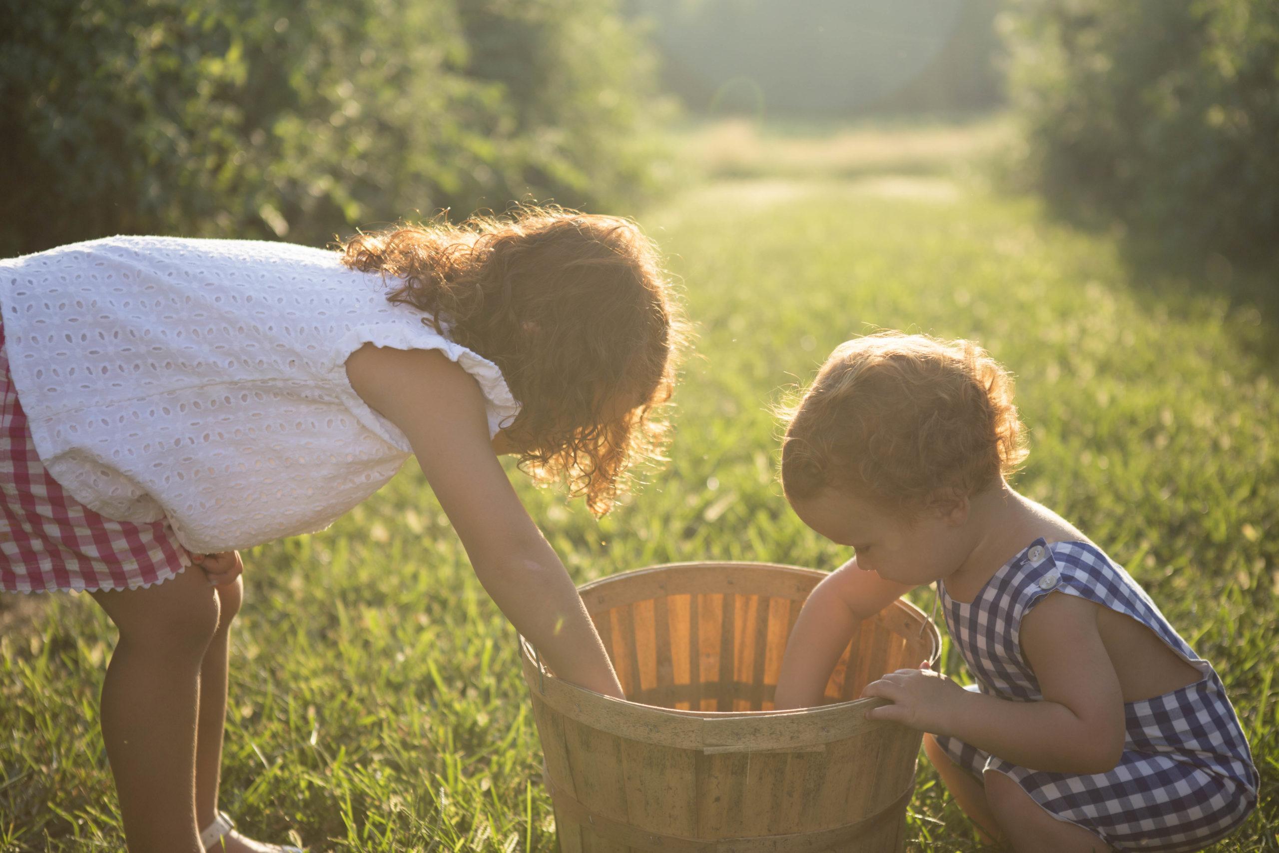 kids picking vegetables