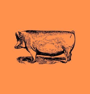 Pork-4
